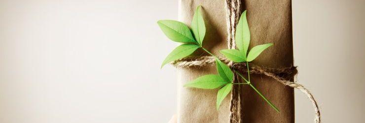 Корпоративные эко-подарки: ТОП-7 идей